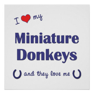 I Love My Miniature Donkeys (Multiple Donkeys) Poster
