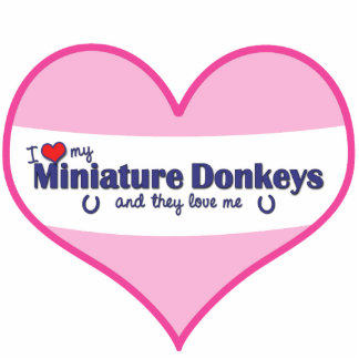 I Love My Miniature Donkeys (Multiple Donkeys) Standing Photo Sculpture