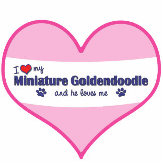I Love My Miniature Goldendoodle Male Dog Photo Sculptures