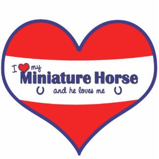I Love My Miniature Horse (Male Horse) Photo Sculpture