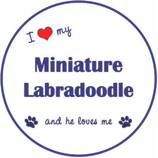 I Love My Miniature Labradoodle Male Dog Acrylic Cut Out