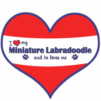 I Love My Miniature Labradoodle (Male Dog) Photo Cut Outs