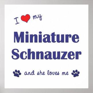 I Love My Miniature Schnauzer (Female Dog) Poster