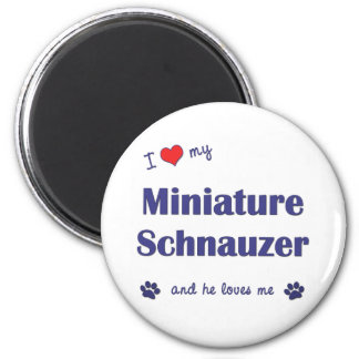 I Love My Miniature Schnauzer (Male Dog) 6 Cm Round Magnet