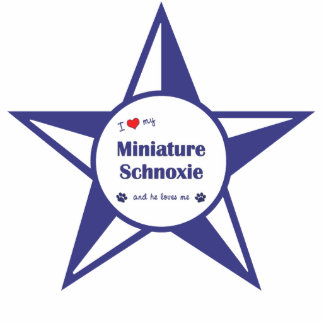 I Love My Miniature Schnoxie (Male Dog) Photo Sculpture Decoration