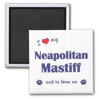 I Love My Neapolitan Mastiff (Male Dog) Square Magnet