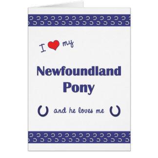 I Love My Newfoundland Pony (Male Pony) Note Card
