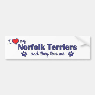 I Love My Norfolk Terriers (Multiple Dogs) Bumper Sticker