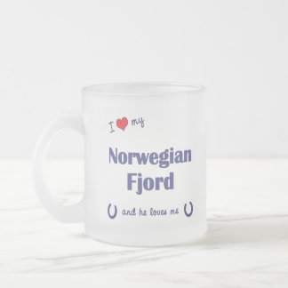 I Love My Norwegian Fjord (Male Horse) Frosted Glass Mug