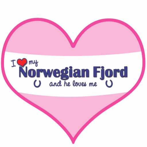 I Love My Norwegian Fjord (Male Horse) Photo Cutout