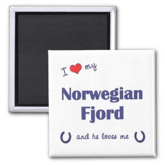 I Love My Norwegian Fjord (Male Horse) Square Magnet