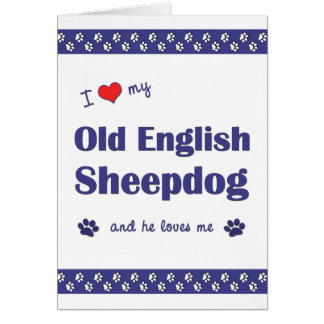 I Love My Old English Sheepdog (Male Dog) Card