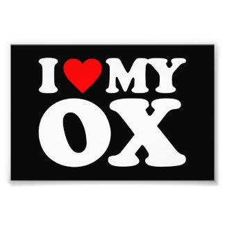 I LOVE MY OX PHOTO PRINT