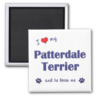 I Love My Patterdale Terrier (Male Dog) Square Magnet