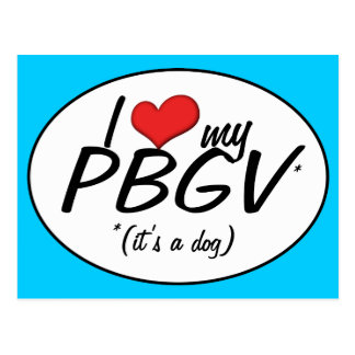 I Love My PBGV (It's a Dog) Postcard