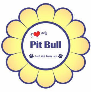 I Love My Pit Bull (Female Dog) Photo Sculpture Decoration