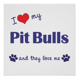 I Love My Pit Bulls (Multiple Dogs) Poster