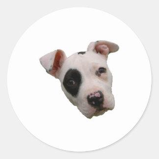 I love my pitbull round sticker