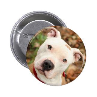 I love my Pittbull terrier 2 Inch Round Button