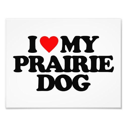 I LOVE MY PRAIRIE DOG ART PHOTO