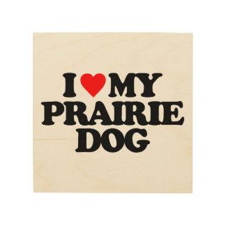 I LOVE MY PRAIRIE DOG WOOD CANVAS