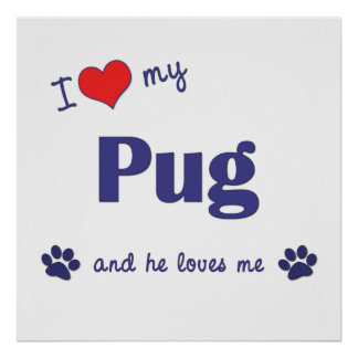 I Love My Pug Male Dog Posters