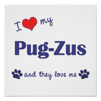 I Love My Pug-Zus Multiple Dogs Print