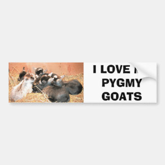 I LOVE MY PYGMY GOATS BUMPER STICKER