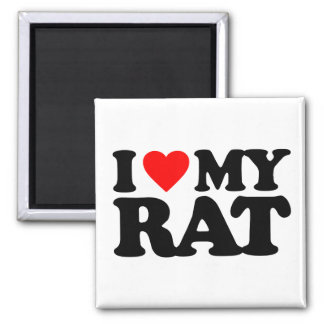 I LOVE MY RAT MAGNET