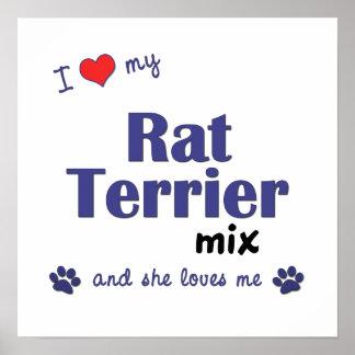 I Love My Rat Terrier Mix (Female Dog) Poster