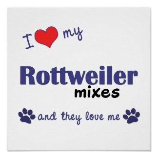 I Love My Rottweiler Mixes (Multiple Dogs) Poster