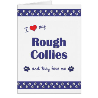 I Love My Rough Collies (Multiple Dogs) Note Card