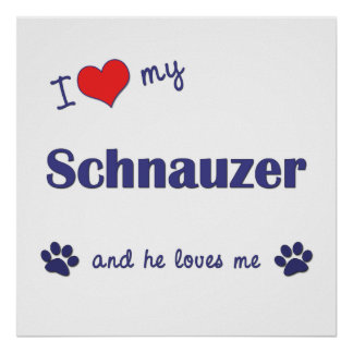 I Love My Schnauzer (Male Dog) Print