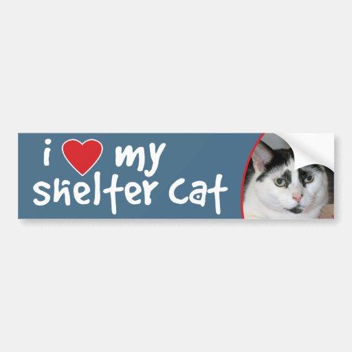 I Love My Shelter Cat Bumper Sticker