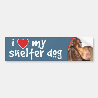 I Love My Shelter Dog Doberman Bumper Sticker