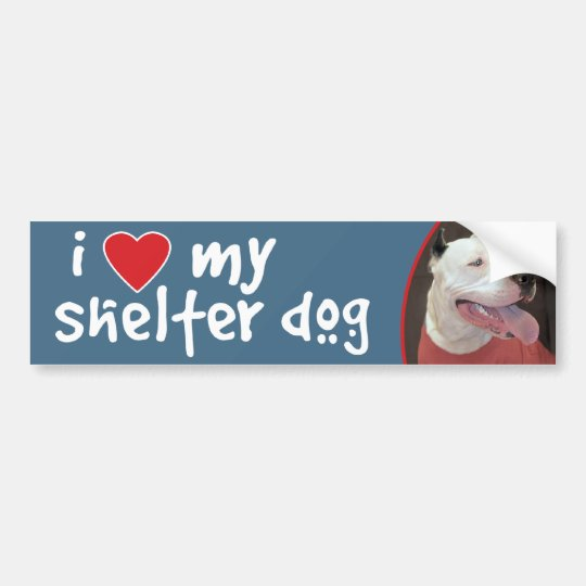 I Love My Shelter Dog-Pitbull Bumper Sticker/Decal Bumper
