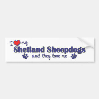 I Love My Shetland Sheepdogs (Multiple Dogs) Bumper Sticker