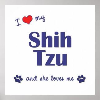 I Love My Shih Tzu (Female Dog) Poster