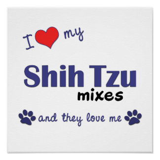 I Love My Shih Tzu Mixes (Multi Dogs) Poster Print