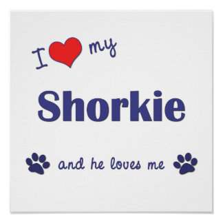 I Love My Shorkie (Male Dog) Poster Print