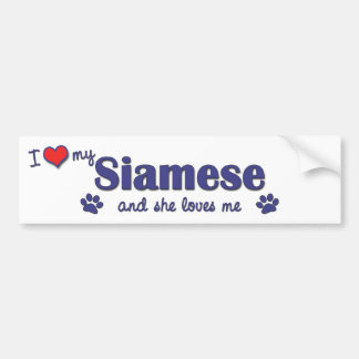 I Love My Siamese (Female Cat) Bumper Sticker