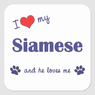 I Love My Siamese (Male Cat) Square Sticker