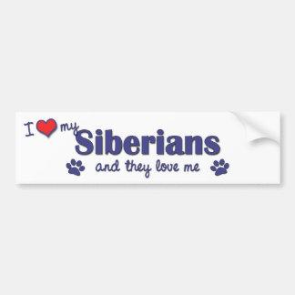 I Love My Siberians (Multiple Cats) Bumper Sticker