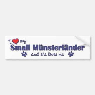 I Love My Small Munsterlander Female Dog Bumper Sticker