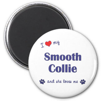 I Love My Smooth Collie (Female Dog) Magnet