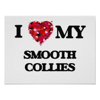 I love my Smooth Collie Poster