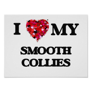 I love my Smooth Collies Poster