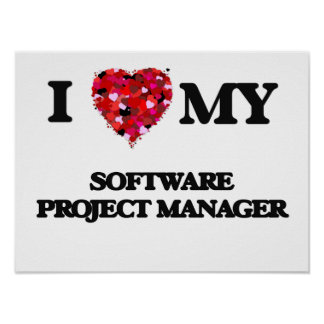 I love my Software Project Manager Poster