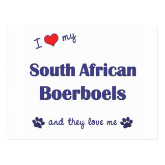 I Love My South African Boerboels (Multiple Dogs) Postcard