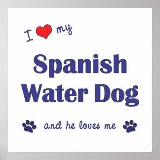 I Love My Spanish Water Dog Male Dog Print
